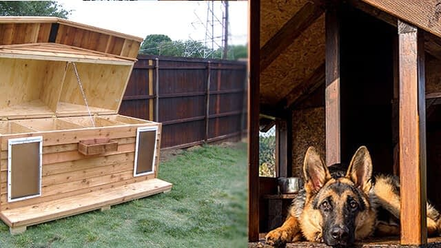 Diy dog house with pallets