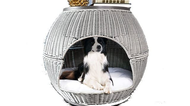The Refined Dog's Igloo Deluxe