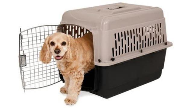 Doskocil crate