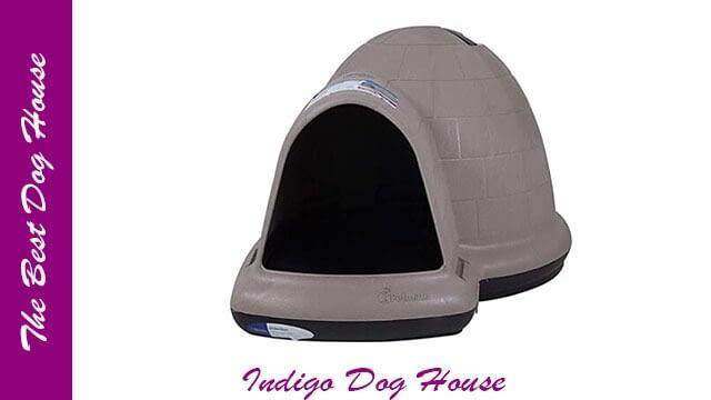 Petmate dog house