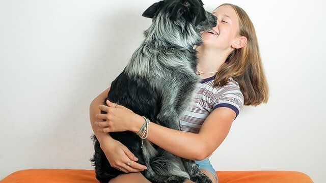 Be friendly with your dog