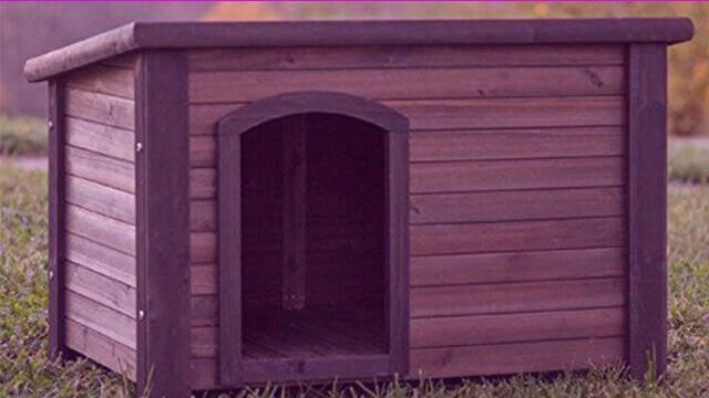 Cabin style dog house