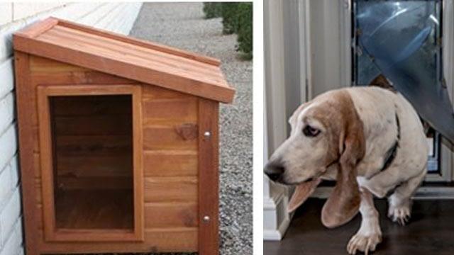 Doggy door DIY dog house