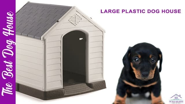 large plastic dog house