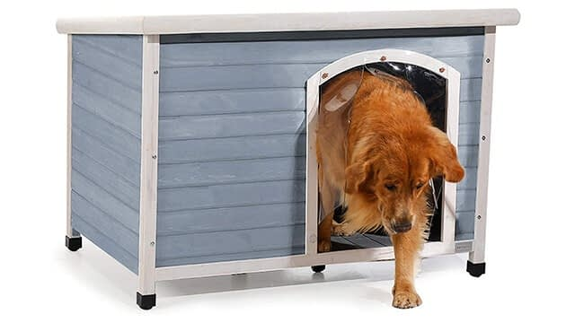 Extra large plastic dog house