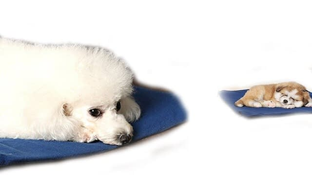 FLYMEI heating pad for dog house