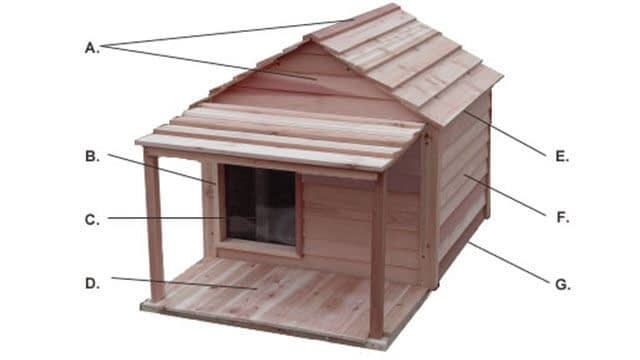 custom dog house ideas