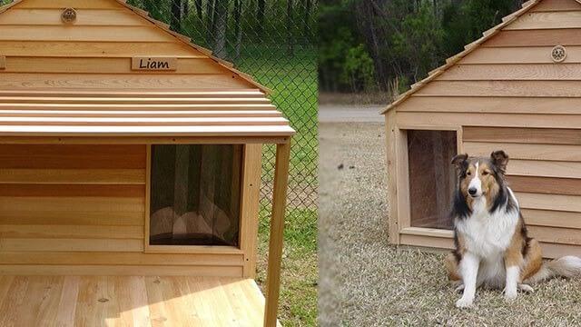 Duplex wood dog house