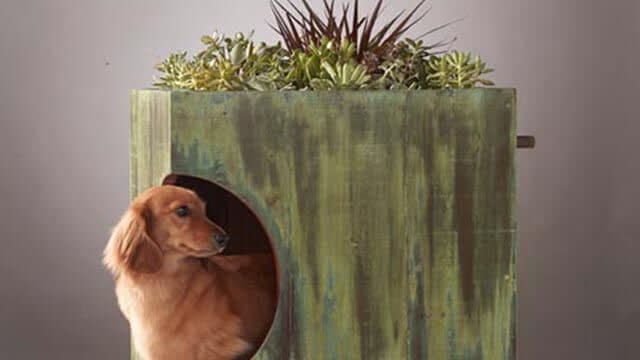 Custom dog house plans