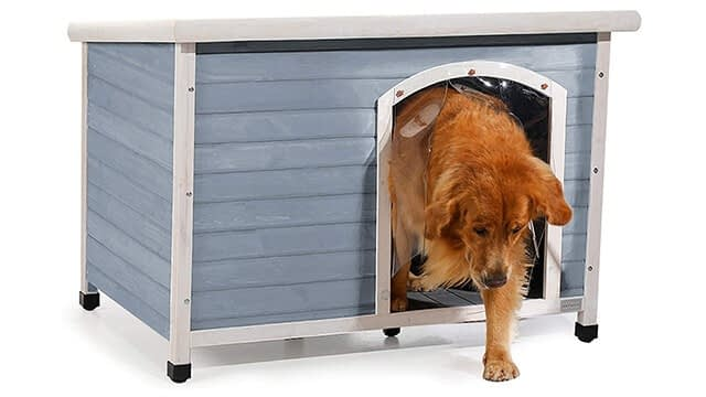 Extra large dog house