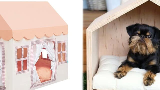 Petite outdoor dog kennel