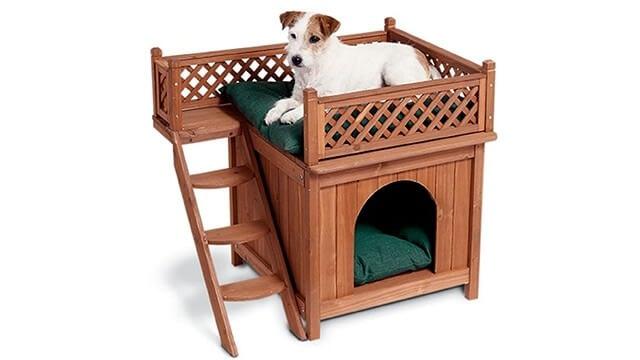 Wooden dog house craft