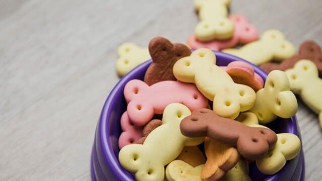 Benefits of homemade dog treats
