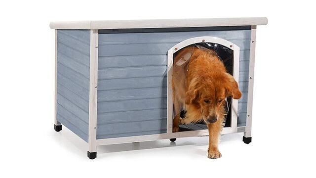 Petsfit house