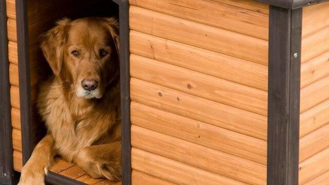 Precision pet petmate log cabin dog house