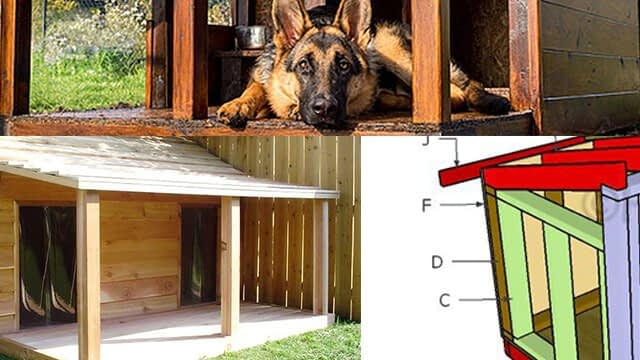 The top 5 large dog house plans