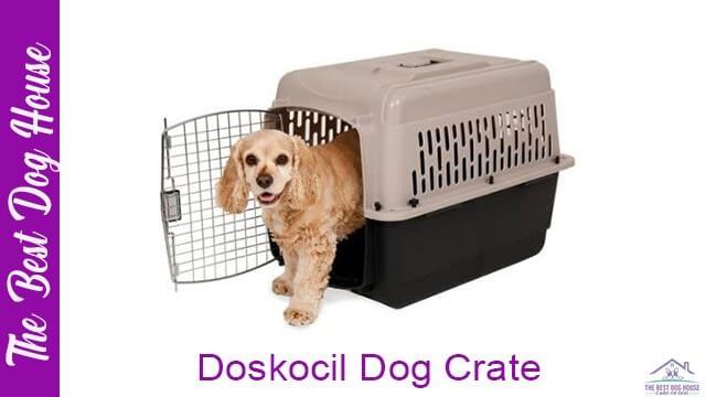 Doskocil dog crate