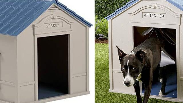 dog house for large dog